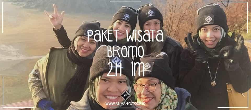 PAKET WISATA BROMO 2H 1M