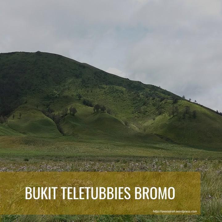 PAKET WISATA BROMO BUKIT TELETUBBIES